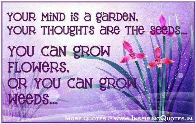 Thoughts  Thoughts on Life  POSITIVE THOUGHTS  True Thought Images Wallpapers Pictures Photos