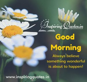 Good morning quote on picture with white daisy flowers