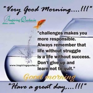 Have a Great Day Good Morning Greetings
